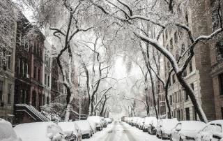 winterproof