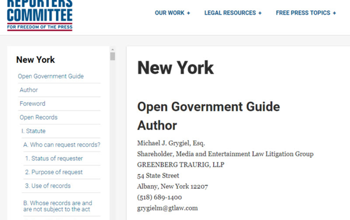 Open Government Guide