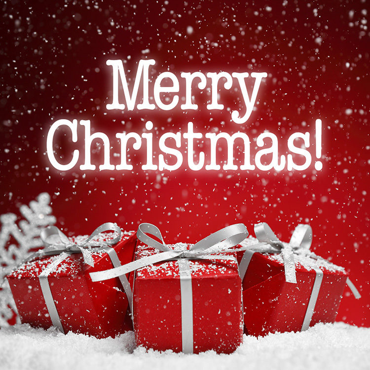 new york law institute merry christmas and happy holidays new york law institute merry christmas and happy holidays